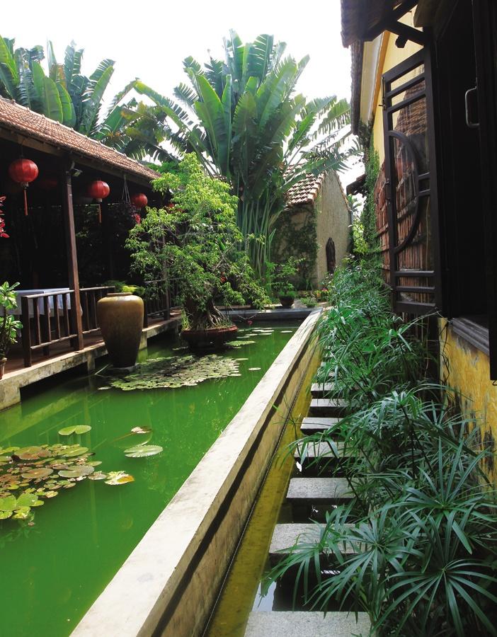 Tùy theo màu sắc, độ nhận ánh sáng, mặt nước ít hay nhiều... của nhà và vườn mà bố trí khối dáng, cây cối phù hợp để cân bằng âm dương