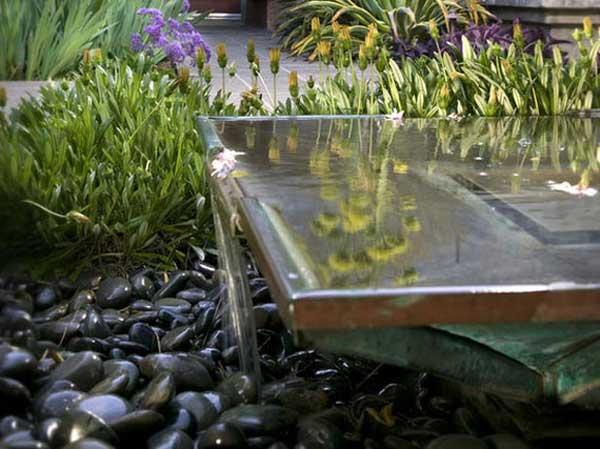 backyard-pond-water-garden-13