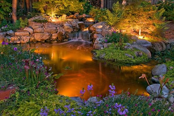 backyard-pond-water-garden-31