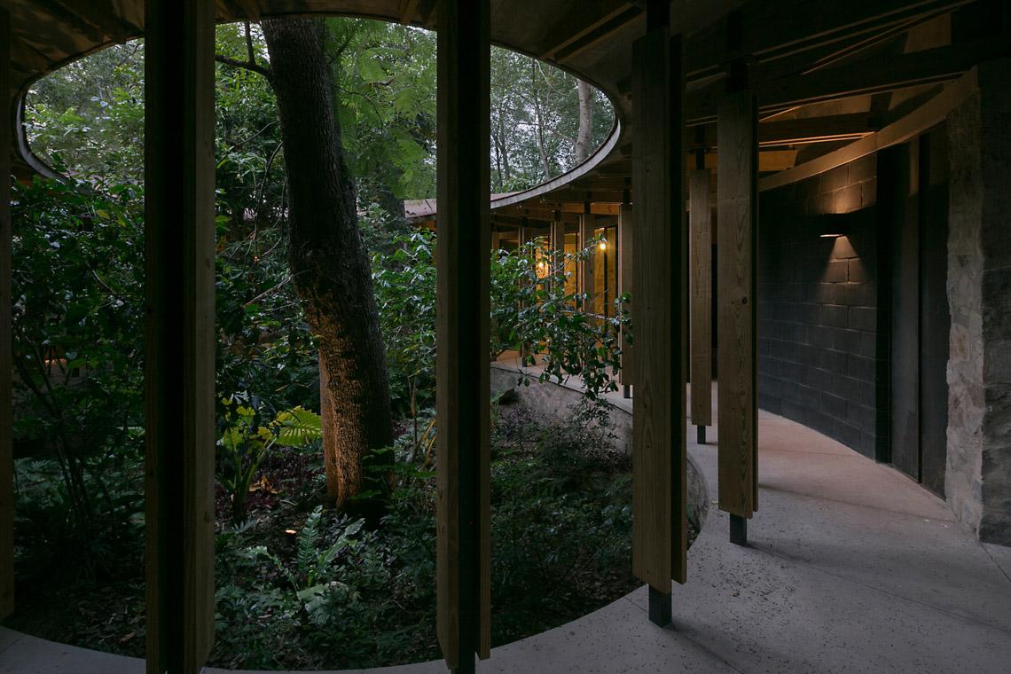 Lạc bước vào biệt thự Amacueca House giữa rừng - 12