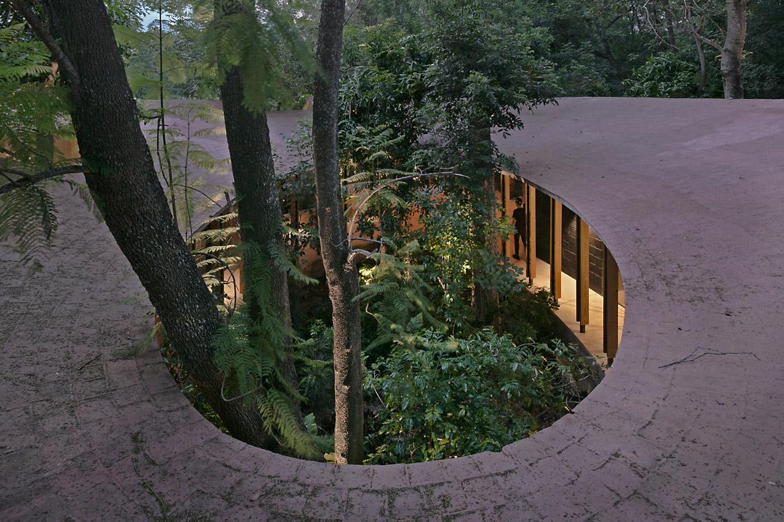 Lạc bước vào biệt thự Amacueca House giữa rừng - 13