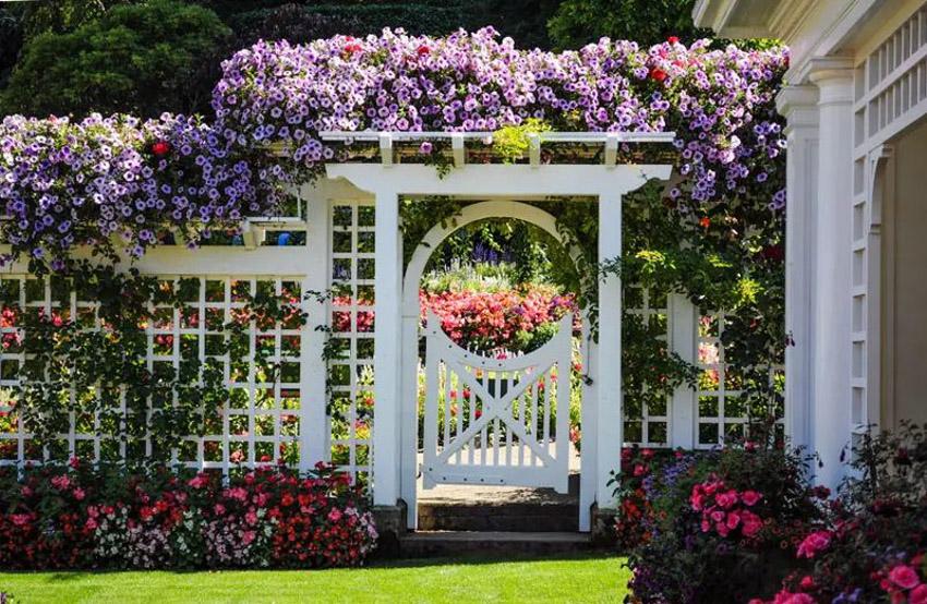 24 Ý tưởng Cảnh quan Vườn: Vườn Anh - 01