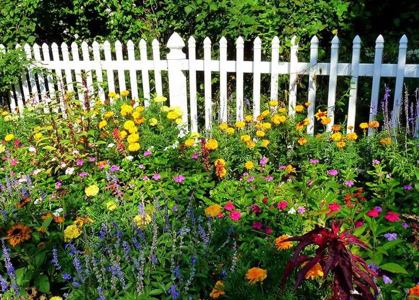 24 Ý tưởng Cảnh quan Vườn: Vườn Anh - 03