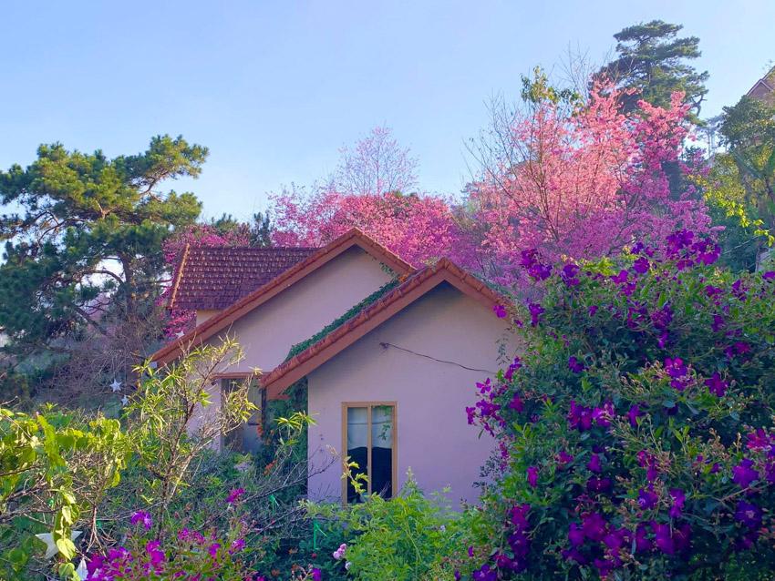 Ngôi nhà đẹp như cổ tích giữa lưng chừng đồi ở Đà Lạt-24