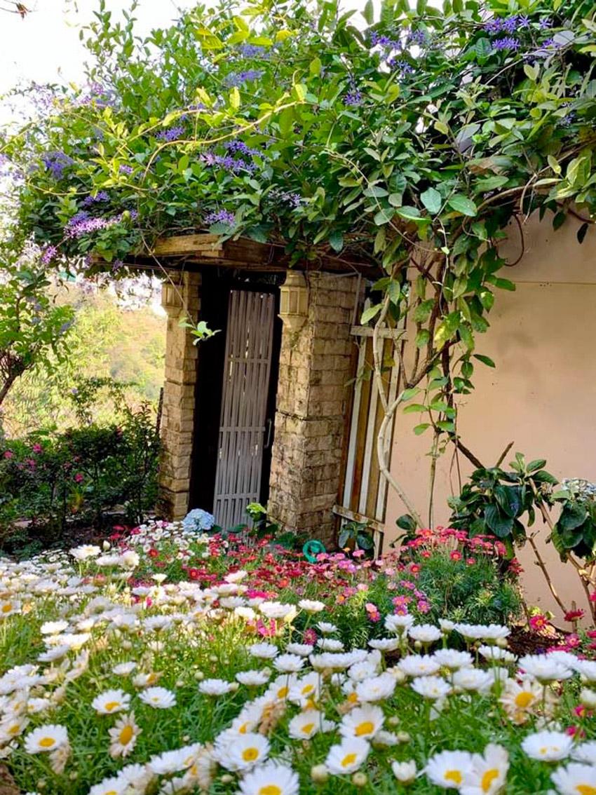 Ngôi nhà đẹp như cổ tích giữa lưng chừng đồi ở Đà Lạt-25