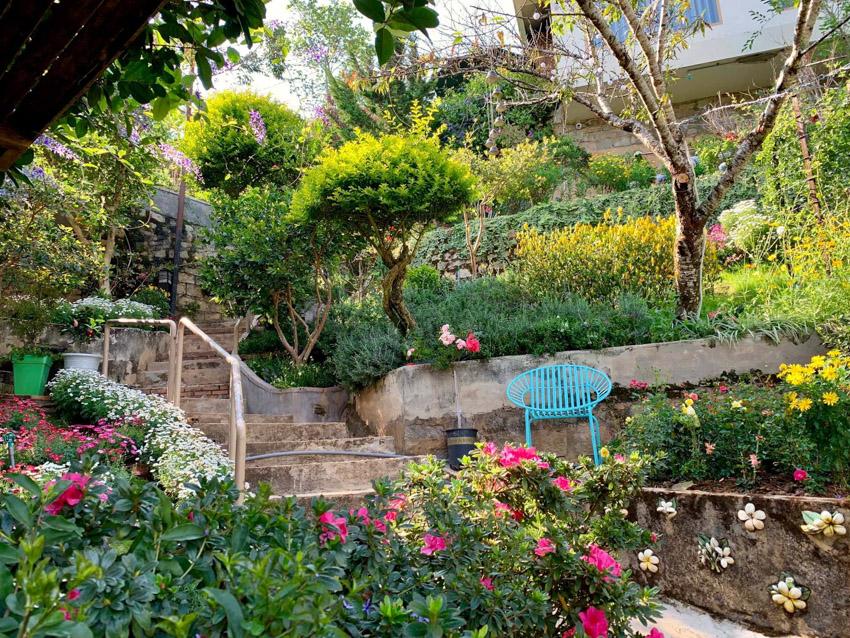 Ngôi nhà đẹp như cổ tích giữa lưng chừng đồi ở Đà Lạt-6