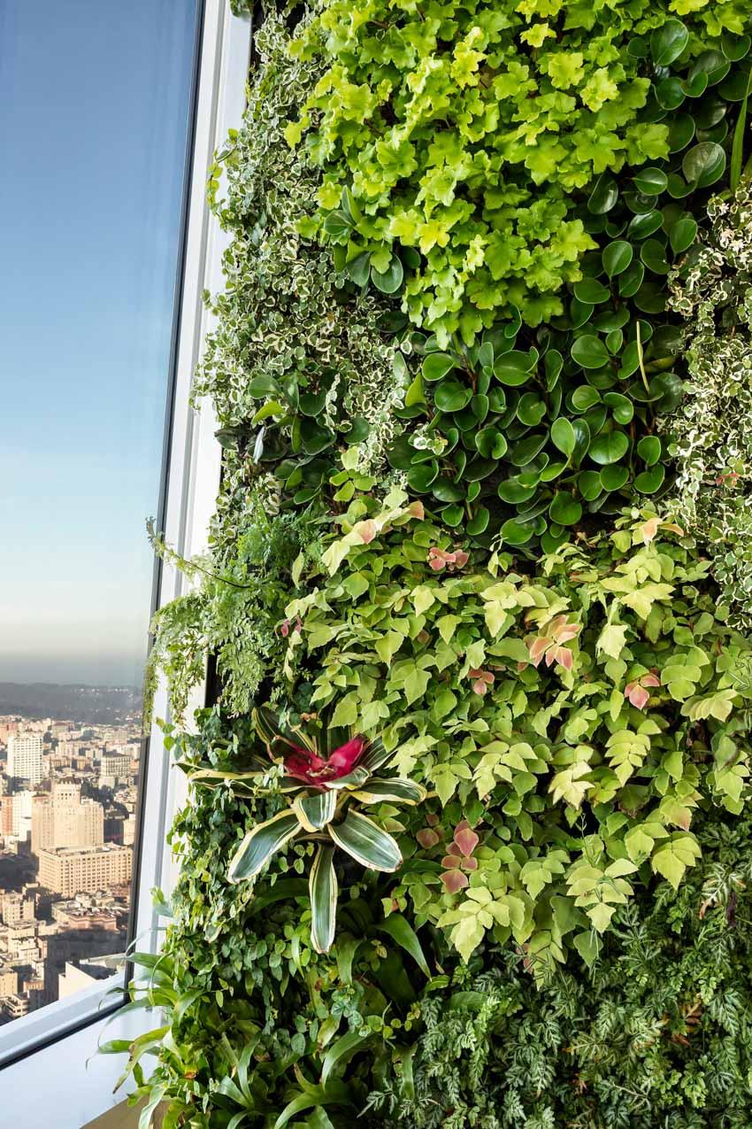 Khu vườn xanh quyến rũ trên những chiếc cột của tòa nhà văn phòng - 7