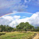 Đến thăm thiên đường rực rỡ Mauritius
