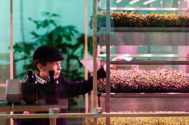 Nhóm Space10 ước tính Lokal sử dụng nước ít hơn 90% so với trồng vườn truyền thống mà vẫn cho ra sản lượng tương ứng.
