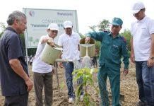 Panasonic VN vượt mốc trồng 100.000 cây xanh