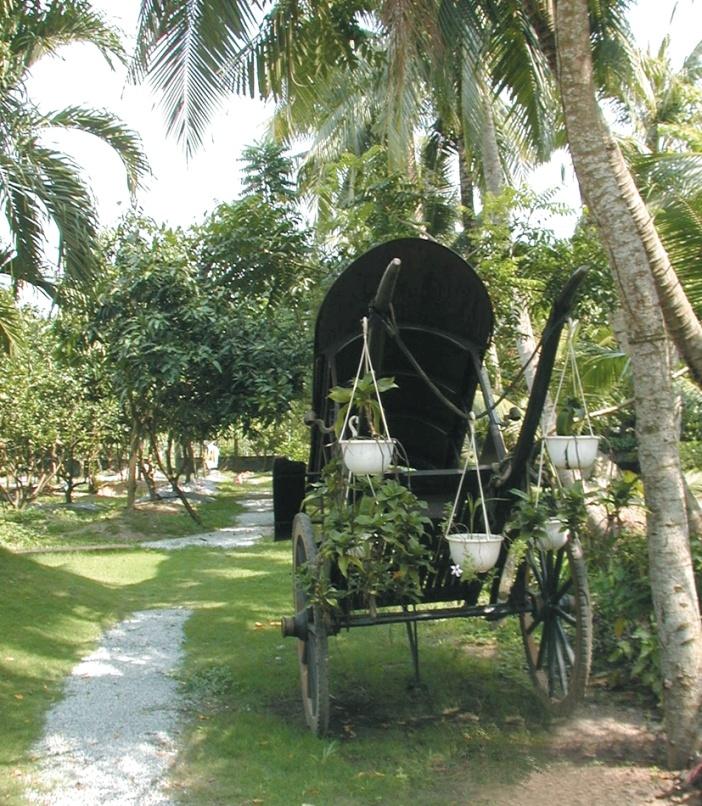 Hàng cau, xe thổ mộ... gợi nhớ đến vùng đất 18 thôn vườn trầu ngày xưa