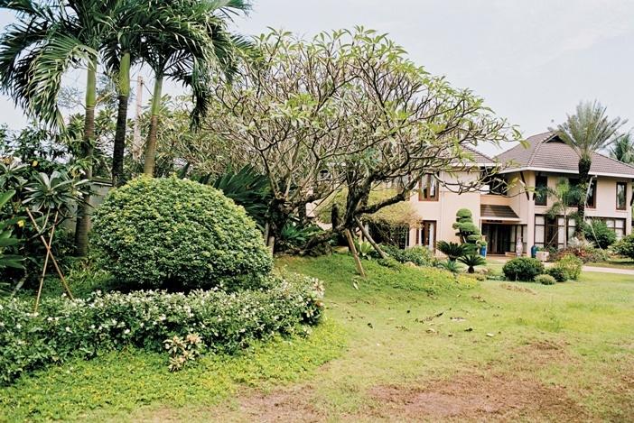 Nhà và vườn cùng tồn tại thân thiện. Đó là yêu cầu lớn nhất của đề bài và là điểm thành công nhất của thiết kế