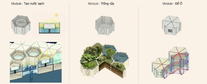 NT-tin-060515-giai-thuong b