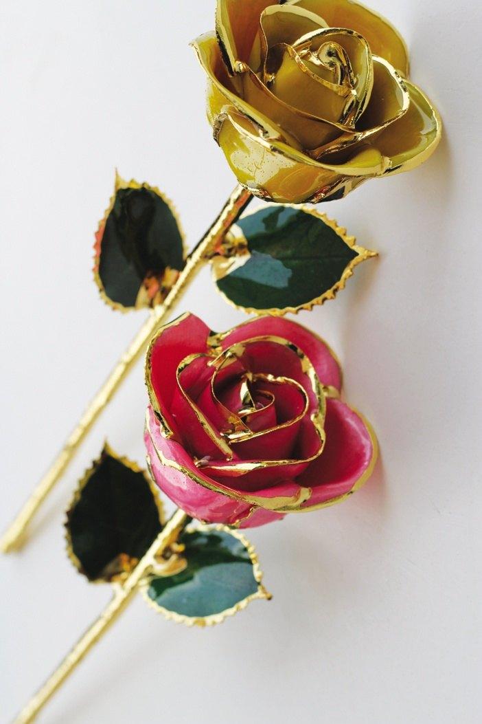 Hoa nhuộm với màu sắc lạ mắt