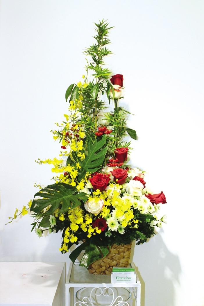 Kết hợp hoa hồng Colombia đỏ, trắng với hoa lan vũ nữ, tạo nên tông màu vàng và đỏ của mùa xuân