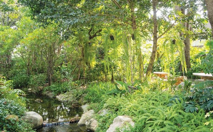 Khun Samphan Private Villa Garden, Bangkok - Khu vườn tư nhân được làm mát nhờ những bọt nước được tạo ra từ thác nước nhỏ trong vườn cùng âm thanh róc rách của thác nước