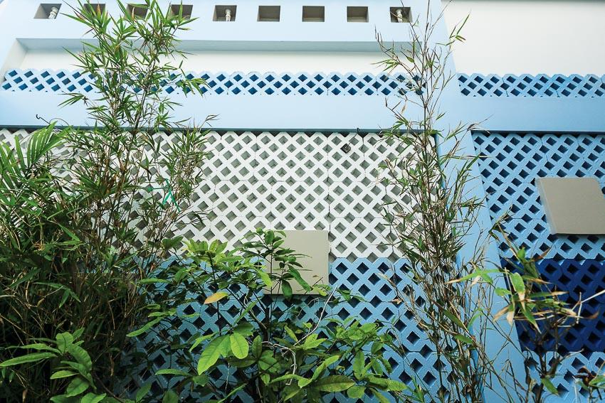 NT266_ mau-sac-phong-thuy_PThuy_2017-6