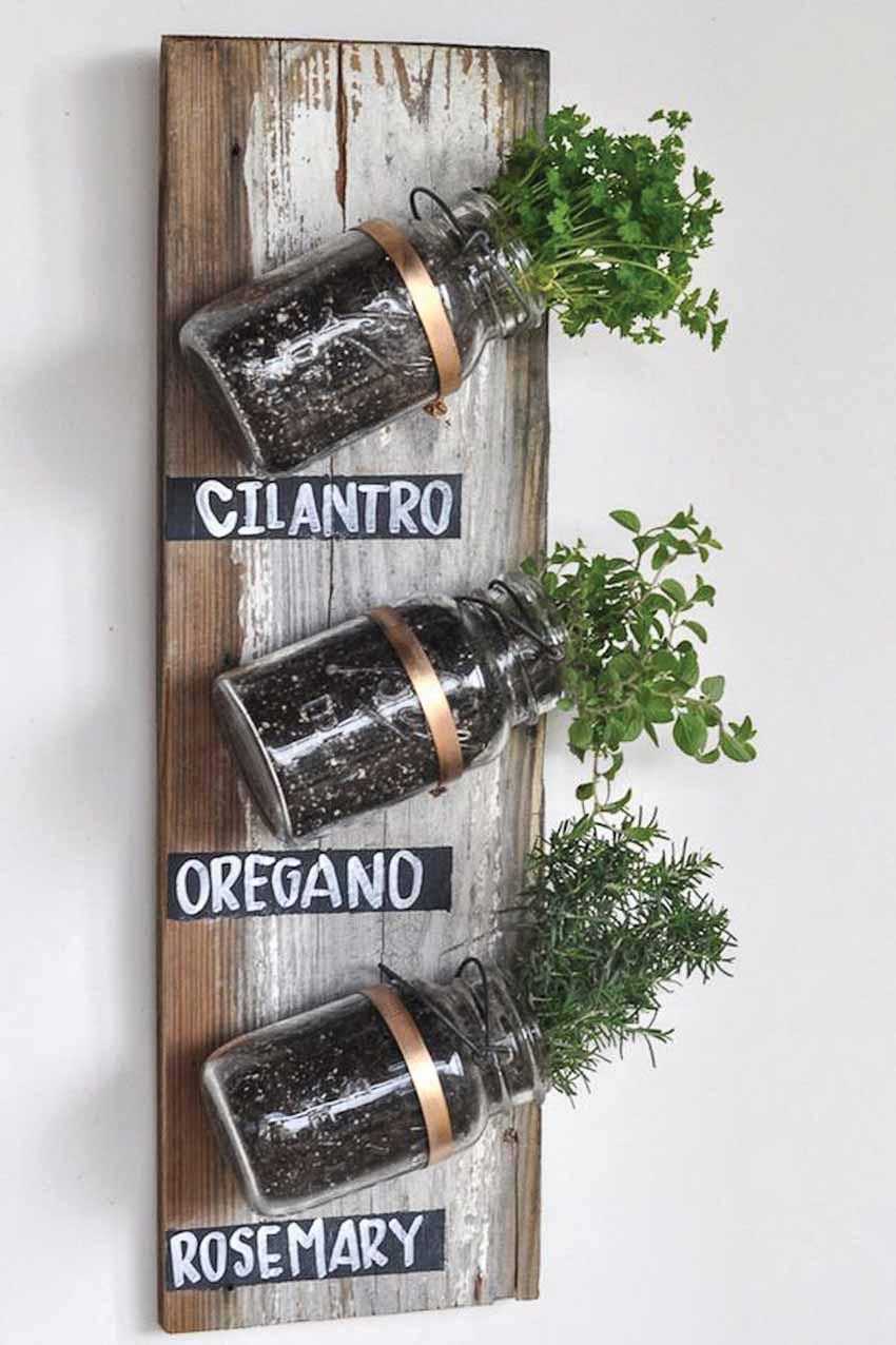Những ý tưởng trồng cây độc đáo