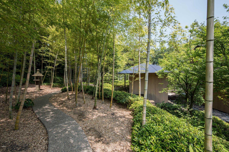 Water Cherry Villa mang đậm phong cách Nhật Bản vừa đương đại vừa truyền thống - 2