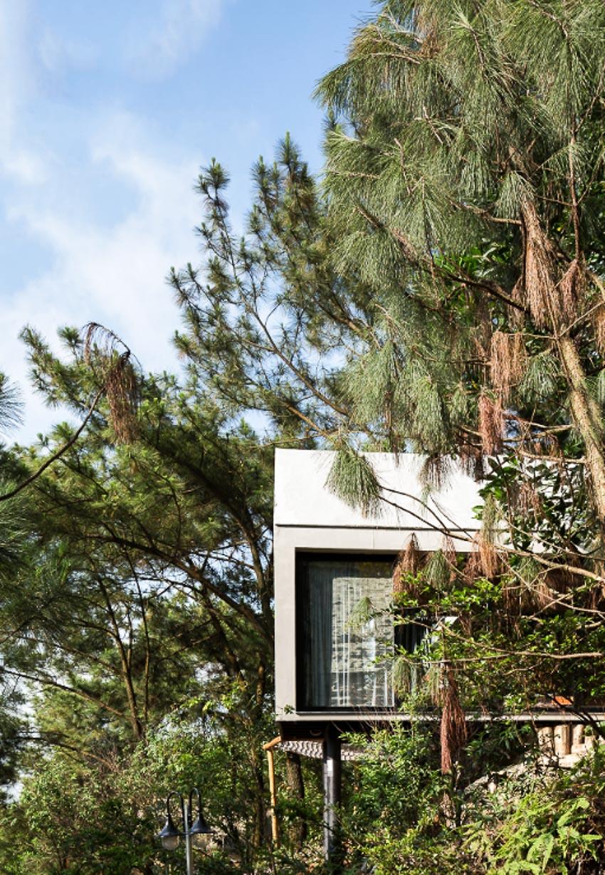 Nhà bên rừng 2 2