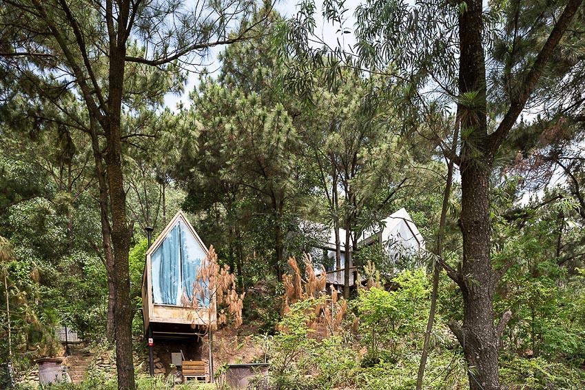 Nhà bên rừng 2 5