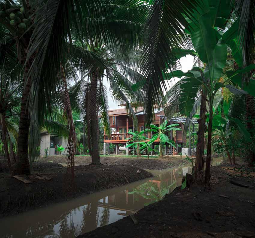 Ngôi nhà sàn gỗ ấm áp nằm giữa vườn dừa xanh mát - 4