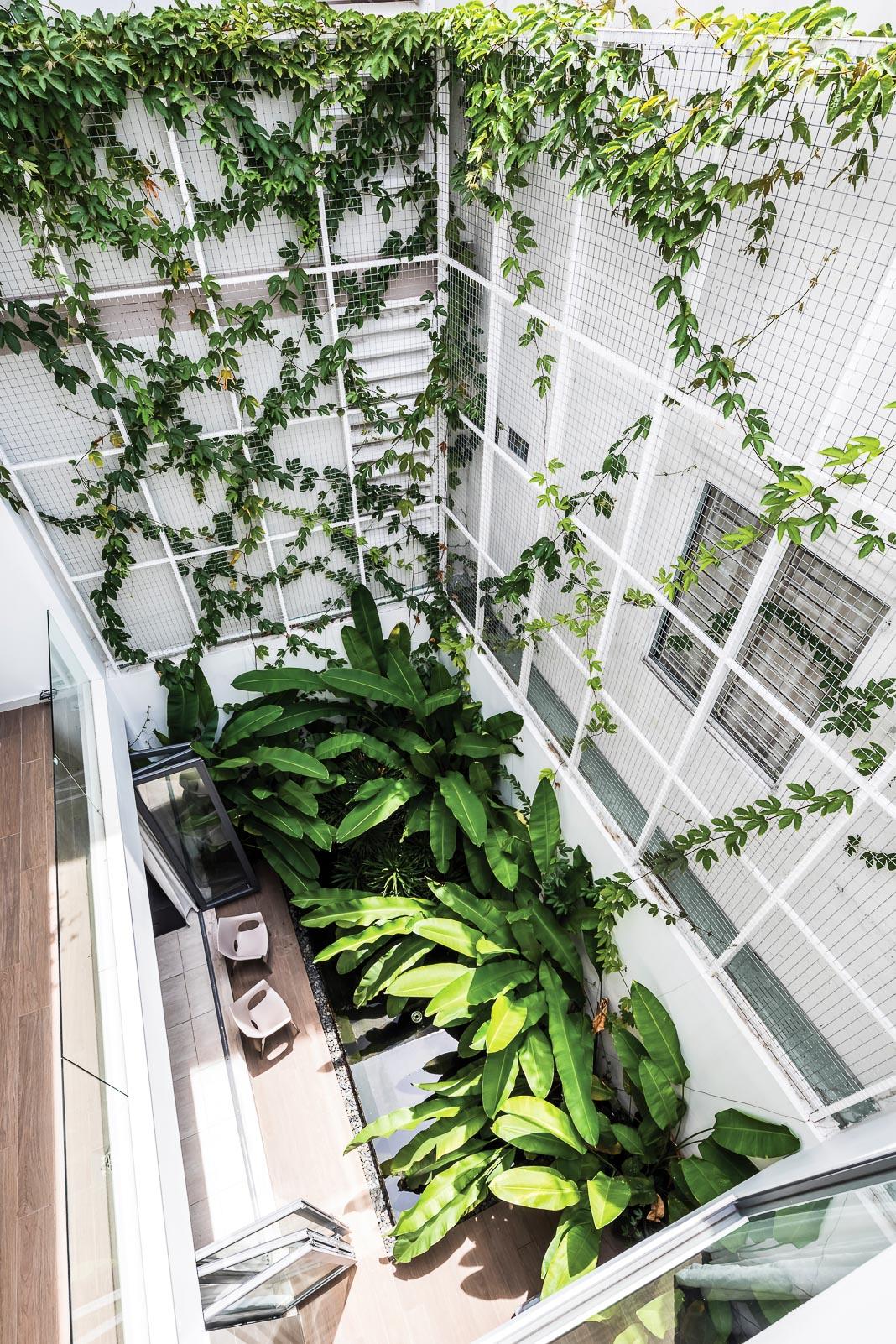 Vườn sau không chỉ đem lại cảm giác thiên nhiên cho không gian sinh hoạt chung dưới tầng trệt mà còn giống như một lõi xanh trên cao để các phòng ngủ cũng có view nhìn ra mảng xanh thiên nhiên 2